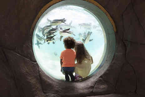 ZSL London Zoo - Tickets for Two Adults and Two Children - Save 0%