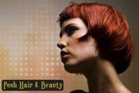 Posh Hair and Beauty - Half Head Highlights or Full Head Colour With Cut, Blow Dry and Conditioning Treatment - Save 68%