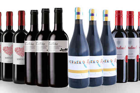 IBERVILLA FINE FOODS - 12 Bottles of Spanish Red Wine - Save 48%