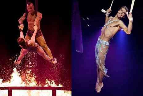 Tony Hopkins Entertainment - Front circle ticket to see the Netherlands National Circus - Save 50%