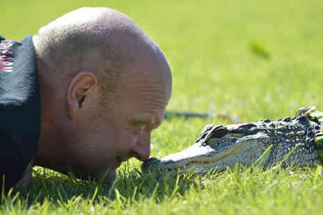 Crocs R Us - Swimming with crocodiles experience and guided tour for one person - Save 63%