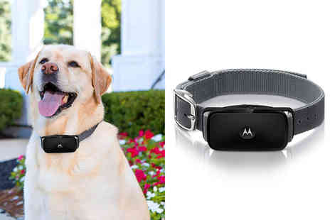 Trojan Electronics - Motorola Bark ultrasonic anti bark collar - Save 50%