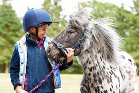 Cowley Riding School - Childrens Pony Day with Lesson and Kit Hire - Save 14%