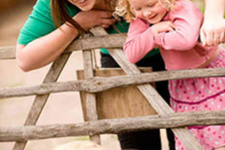 Manor Farm Country Park - One Adult and One Child Ticket to Manor Farm - Save 50%