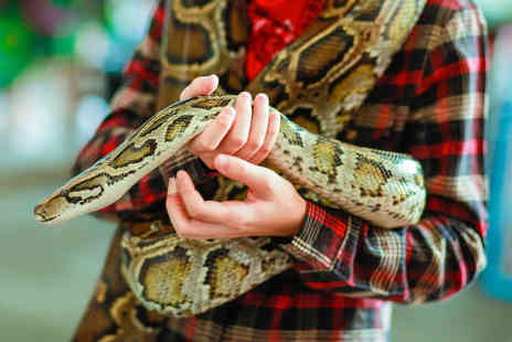 Crocs R Us - Entry to a venomous snake show for one person - Save 71%