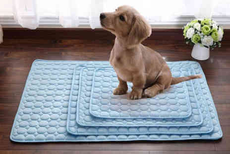 Backtogoo - Small pet cooling pad choose from three colours - Save 88%