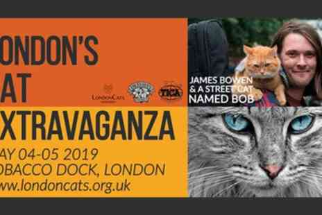 LondonCats International Show 2019 - One child or adult ticket to LondonCats International Show on 4 To 5 May - Save 33%
