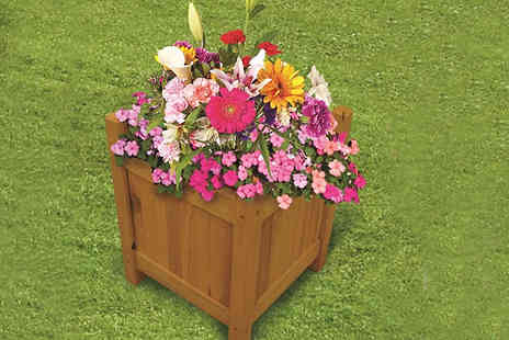 Home Season - Wooden Garden Planters Choose From 3 Styles - Save 85%