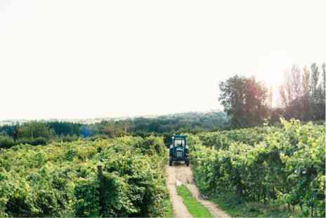 Virgin Experience Days - Vineyard Tour and Tasting with Unlimited Cream Tea for Two - Save 0%