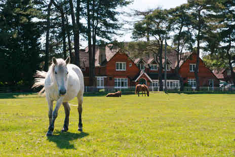 The Beaulieu Hotel - Two Nights New Forest Escape for Two - Save 0%