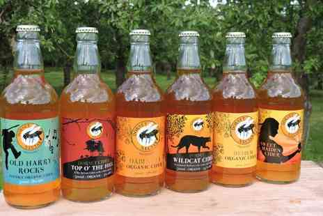 Dorset Nectar Cider - Enjoy a guided tour with a tasting for two people - Save 50%
