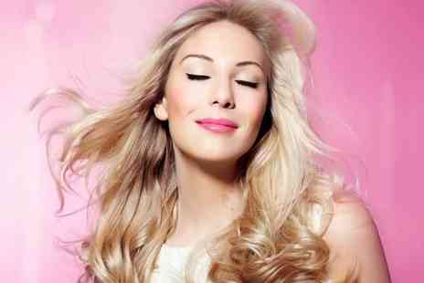 The Style Hut - Half head of highlights, cut and blowdry - Save 68%
