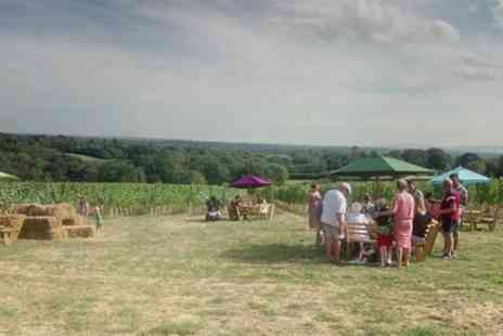 Beacon Down Vineyard - Vineyard Tour with Tasting and Lunch for Two - Save 36%
