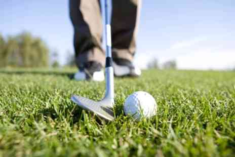 Archibald Foster Unlimited Golf - 50 Minute Golf Lessons with PGA Professional - Save 64%