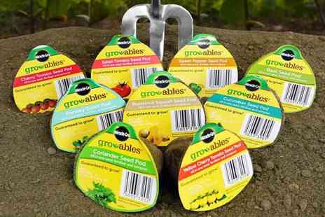 Dream Price Direct - Pack of eight Miracle Gro Gro-ables biodegradable seed pods - Save 77%