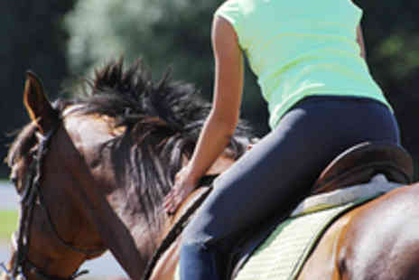 Moorwood Riding School - Horse Riding Lesson - Save 52%