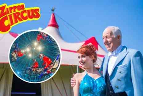 Zippos Circus - One side view ticket from 5th To 31st July - Save 46%