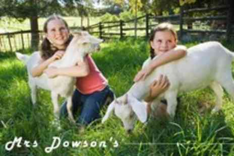 Mrs Dowsons - Childrens Farmyard Party For Ten With Hot Food, Party Bags and Ice Cream - Save 60%