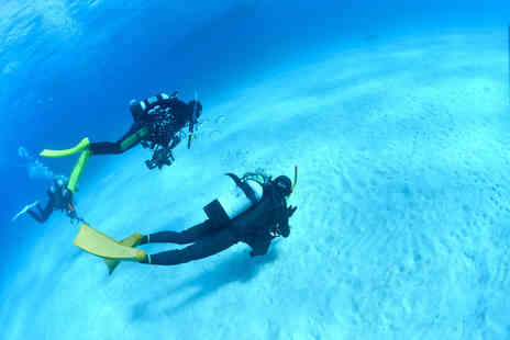Aqua Pursuits - Discover scuba diving experience for one or PADI open water referral course - Save 63%