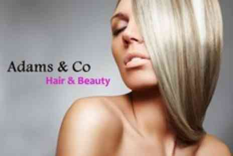 Adams and Co Hair and Beauty - Half Head Highlights With Restyle Plus Conditioning Treatment - Save 66%