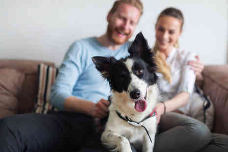 Holly and Hugo - Online animal training and psychology course - Save 94%