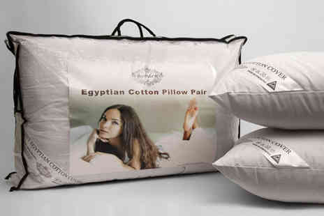 Direct Warehouse - Set of two Egyptian cotton pillows - Save 67%