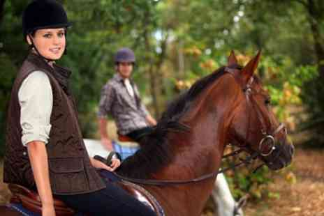 Edinburgh and Lasswade Riding Centre - One Hour Horse Riding Lesson or Hack - Save 41%