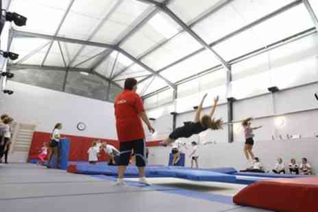 The Wickford Trampoline Centre - 90 Minute Trampoline Session for Up to Four - Save 38%