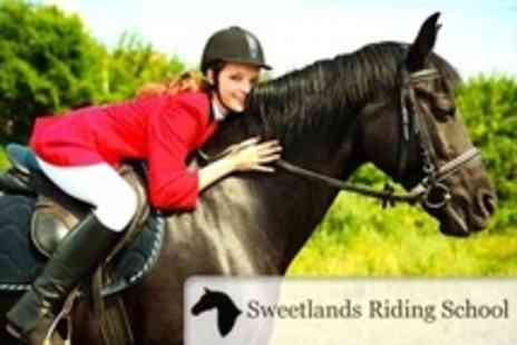 Sweetlands Riding School - Horse Riding Lesson and Hack for One  - Save 58%