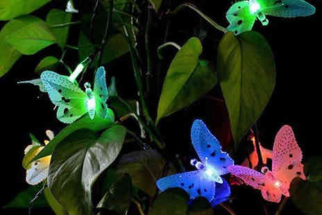 Wow What Who - 12 Led Solar Powered Butterfly Lights - Save 73%