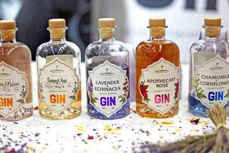 The Gin To My Tonic - Entry to gin event inc tastings in Liverpool - Save 40%