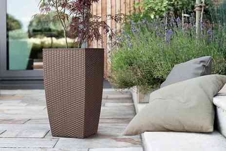 Dream Price Direct - Pair of mesh planters choose from brown or white - Save 75%