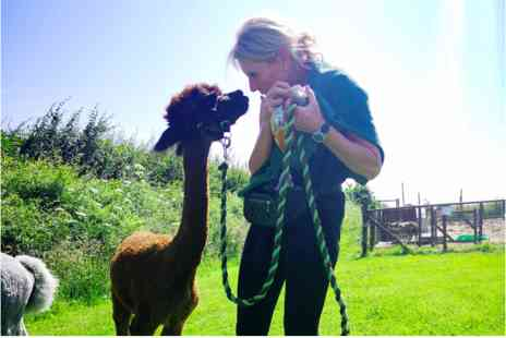 Eagle Heights Wildlife Foundation - Alpaca Trekking and Entry for Two - Save 0%