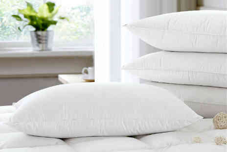 Direct Warehouse - Set of four goose pillows - Save 0%