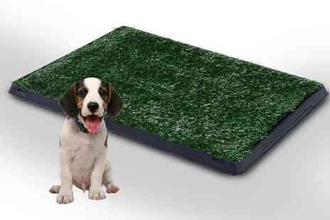 Mhstar - Indoor pet toilet training mat choose from two sizes - Save 67%