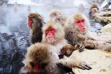 Cruise Direction - Snow monkeys and ryokan tour with cruise - Save 0%