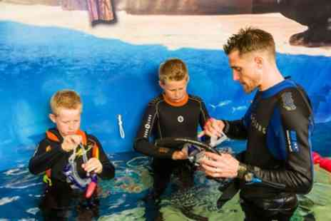 Skegness Aquarium - Snorkelling with Two Aquarium Passes Each for One or Two - Save 36%