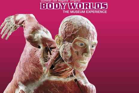 BWLON Experience - Ticket and fast-track entry to Body Worlds London The Museum Experience, Piccadilly Circus see the phenomenal exhibition - Save 38%
