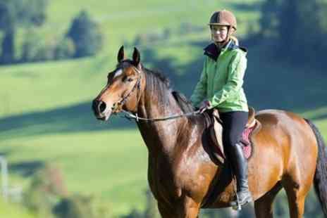 Mill Farm Riding School and Trekking Centre - 90 Minute Horseback Trek for One or Two - Save 60%