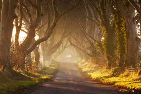 Stones and Thrones - Game of Thrones tour from Belfast - Save 29%