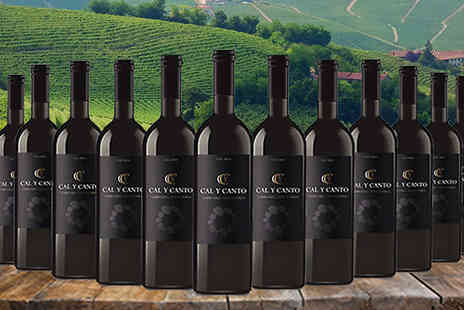 MGB Lifestyles - 12 Bottles of Award Winning Cal Y Canto Castilla Red Wine - Save 65%