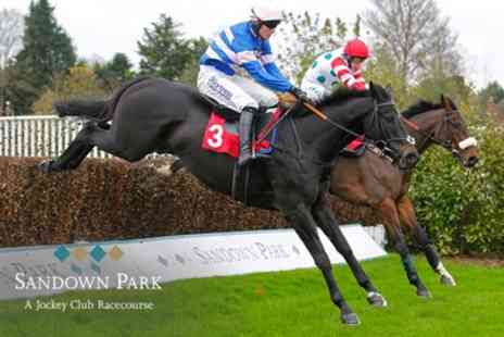 Sandown Park Racecourse - Up to four grandstand tickets on 10 November - Save 44%